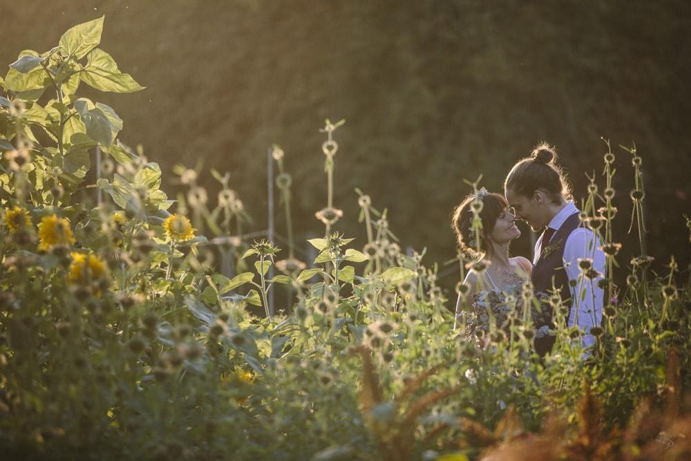 bröllopsfotograf Rosendals trädgård, brudpar bland solrosor
